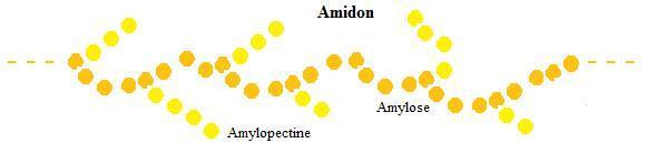 3 image amidon 376fa