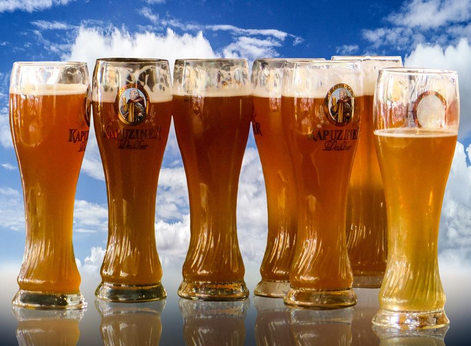 Homme et la biere 13000 ans histoire 1
