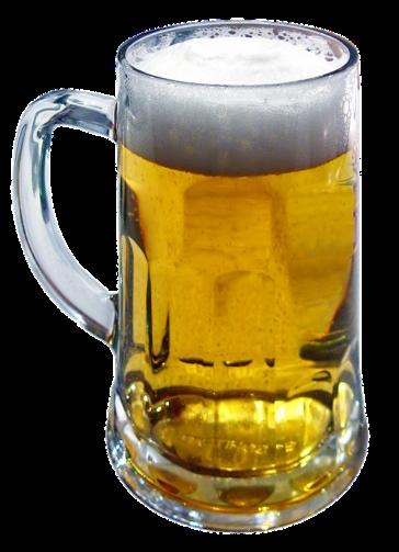 Homme et la biere 13000 ans histoire 2